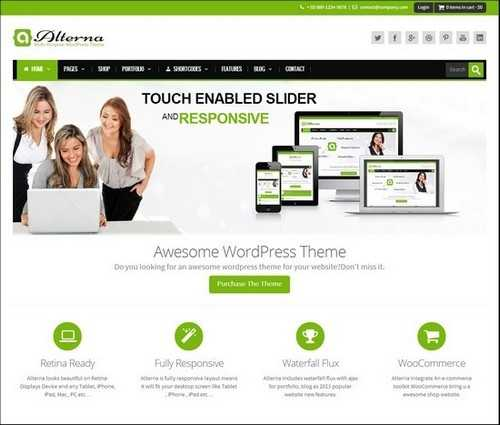 Alterna Responsive WordPress Theme